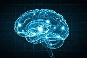 brain - illuniated